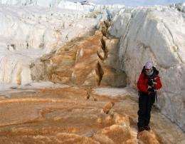 Ancient ecosystem thrives millions of years below Antarctic glacier