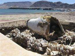 Invasive mussels imperil western water system (AP)