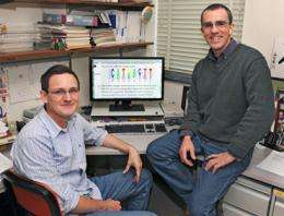 Iowa State University researcher discovers key to vital DNA, protein interaction