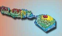 Island of Stability