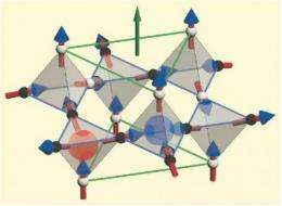 Large-scale cousin of elusive 'magnetic monopoles' found at NIST