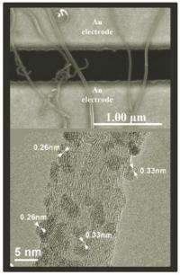 New Gas Sensor Based on Multiwalled Carbon Nanotubes