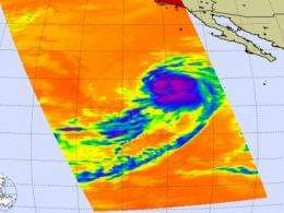 Tropical Storm Ignacio may get some company in the eastern Pacific