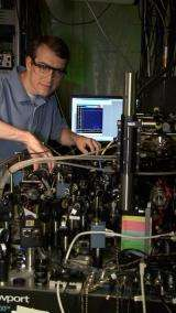 Scientists demonstrate 'universal' programmable quantum processor