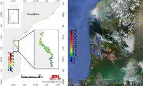 NASA researcher nets first measure of Africa's coastal forests