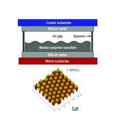 Scientists solve decade-long mystery of nanopillar formations