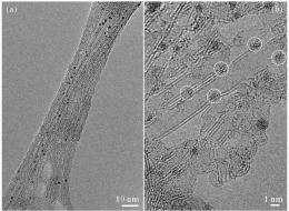 Nanoparticles go platinum: NCEM instruments provide key images