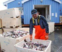 A Greenland fisherman