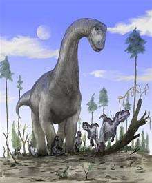 A handout image obtained from the University of Portsmouth in 2008 shows an artist's impression of a sauropod