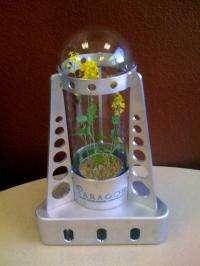A Moon based green house