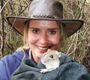 Bush rats fight back