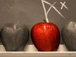Charter schools, studied