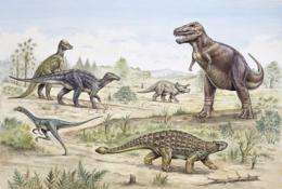 Dinosaurs declined before mass extinction