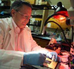 Dr. David Pollock