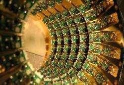 Dwave processor