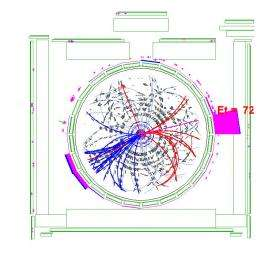 Fermilab collider experiments discover rare single top quark