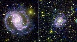 Galaxies Demand a Stellar Recount