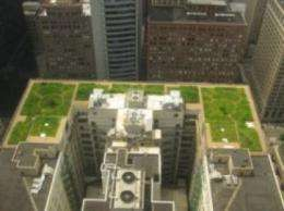 'Green' roofs may help put lid on global warming