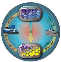 Hydrogen Storage Gets New Hope