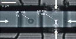 Integrated optical trap holds particles for on-chip analysis