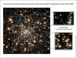Largest collection of anomalous white dwarfs observed in new Hubble images
