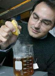 Model backs green tea and lemon claim, lessens need to test animals