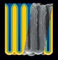 Nanotech Batteries for a New Energy Future