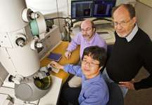 New effort probes how two groups of viruses cause disease