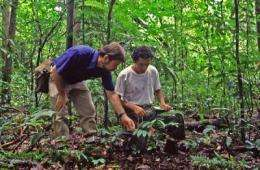 New guide to tropical seedlings: Essential to climate change research