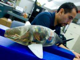 New robots mimic fish's swimming