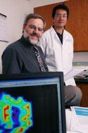 Oxygen + MRI might help determine cancer therapy success, researchers find