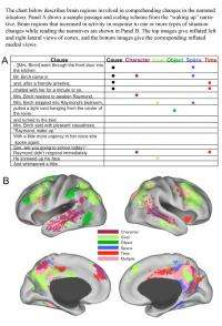 Readers build vivid mental simulations of narrative situations, brain scans suggest
