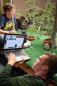 Robotic gardening: MIT course creates robot-tending tomatoes