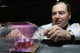 Simple device can ensure food gets to the store bacteria free