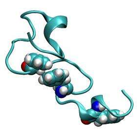 Software speeds up molecular simulations