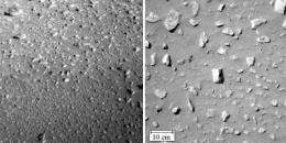 Spirit Rover Images of Martian Rocks