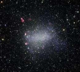 The Milky Way's tiny but tough galactic neighbor