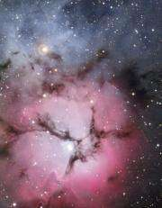 Trifid triple threat