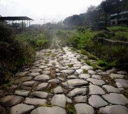 Via Tiburtina -- an interdisciplinary journey through Rome's urban landscape