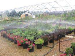 Water-conserving irrigation strategies minimize overwatering, runoff