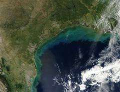 Water monitor eyes farm runoff in Gulf of Mexico (AP)