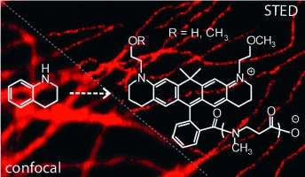 Written in Red: Red-Emitting Dyes for Optical Microscopy and Nanoscopy