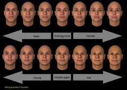 Study finds that the same face may look male or female