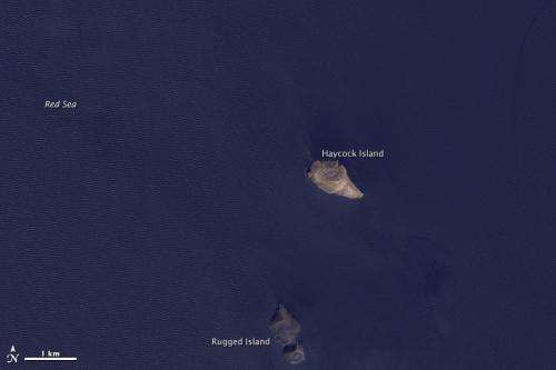 As seen from space: Volcanic eruption creates new island in the red sea