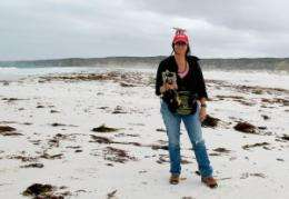 Climate scientist studies ancient shorelines