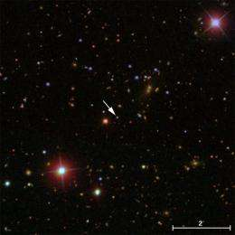 Cosmic weight watching reveals black hole-galaxy history