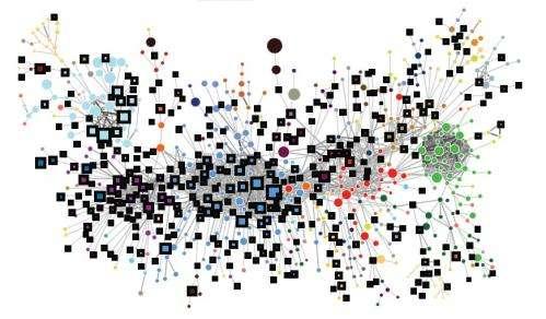 economic complexity network