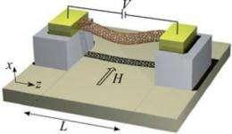 Electromechanics also operates at the nanoscale
