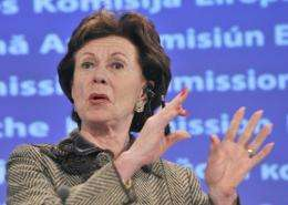 European Union digital agenda commissioner Neelie Kroes