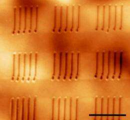 Heated AFM tip allows direct fabrication of ferroelectric nanostructures on plastic